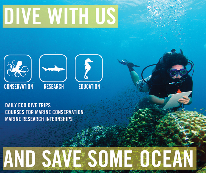 Dive With Us and Save Some Ocean