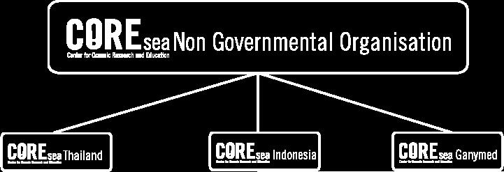 CS-structure