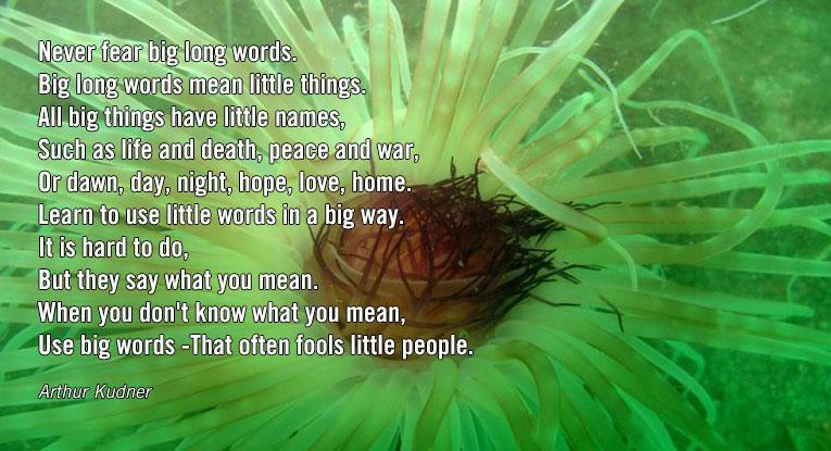 big words mean little things