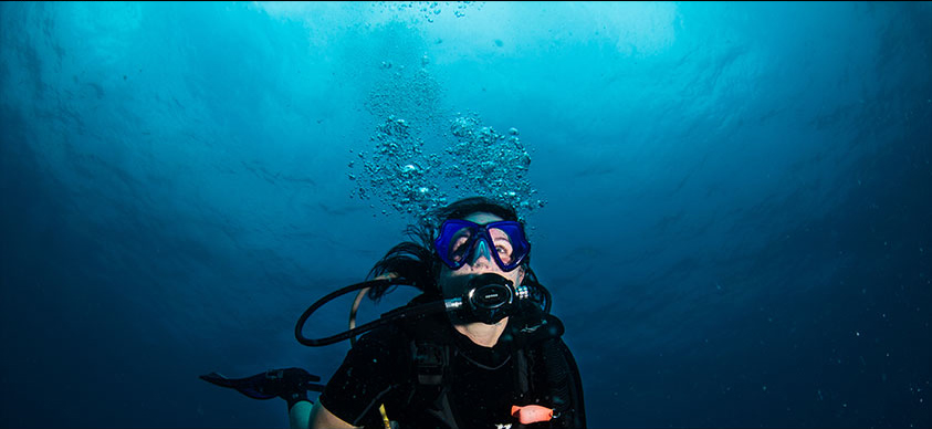 eco scuba diving courses
