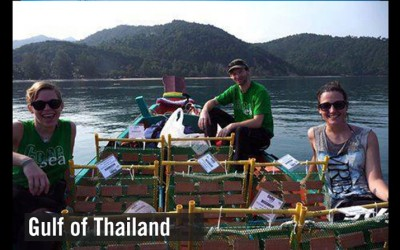 About the state of health of the Gulf of Thailand (5)