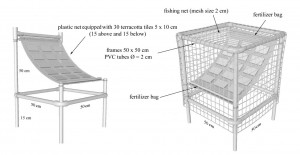 experimental cage design