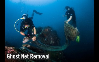 The catch-22 of Sea Food: Ghost Nets