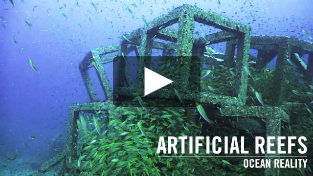 Artificial Reefs | by Ocean Reality
